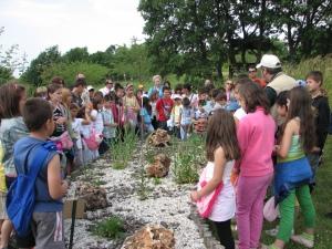 Ημέρα Περιβάλλοντος 2009 στον Κήπο 058