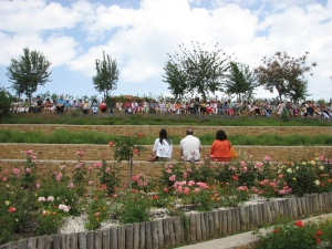 Ημέρα Περιβάλλοντος 2009 στον Κήπο 084