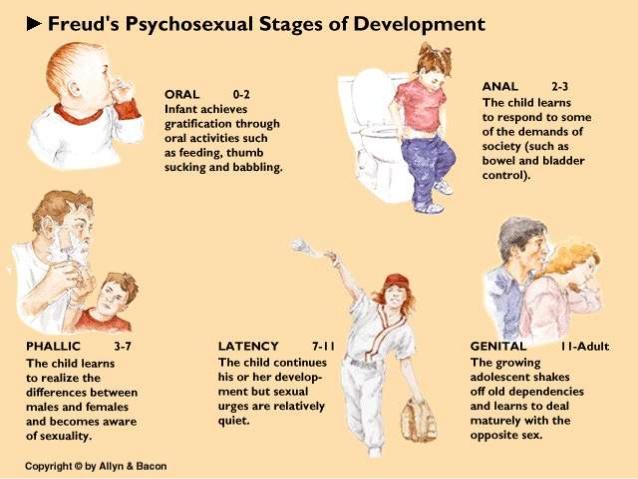 week-21-psychosexual-stages-5-6381