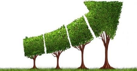 organic-growth