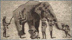 elephant6blindmen