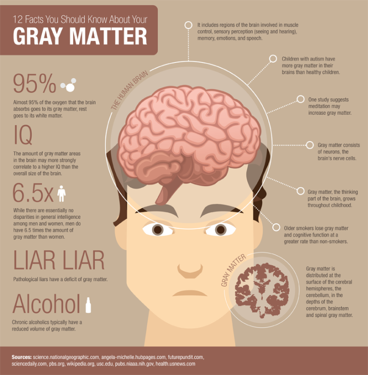 gray-matter-facts