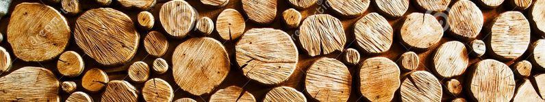 ξύλα1