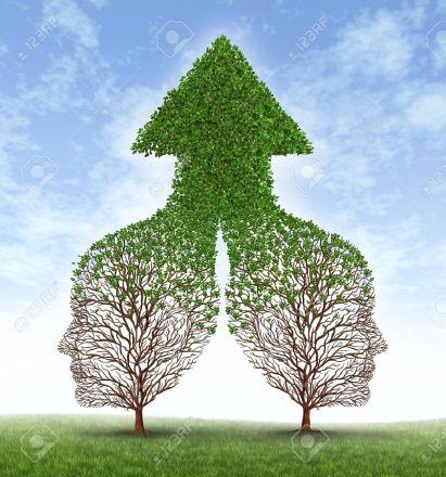 14837711-gemeinsam-wachsen-partnerschaft-mit-zwei-bäumen-in-der-form-des-menschlichen-geschäftsleute-leitet-versc