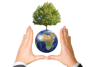 earth-with-tree-between-hands-ecology-concept.jpg